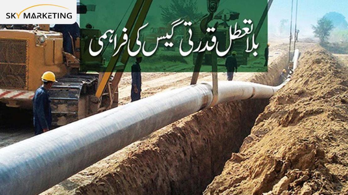 D:\Suleman Tasks\January Articles 2021\Al Noor Orchard Lahore\Al Noor Orchard Lahore Pics with logos\18.jpg